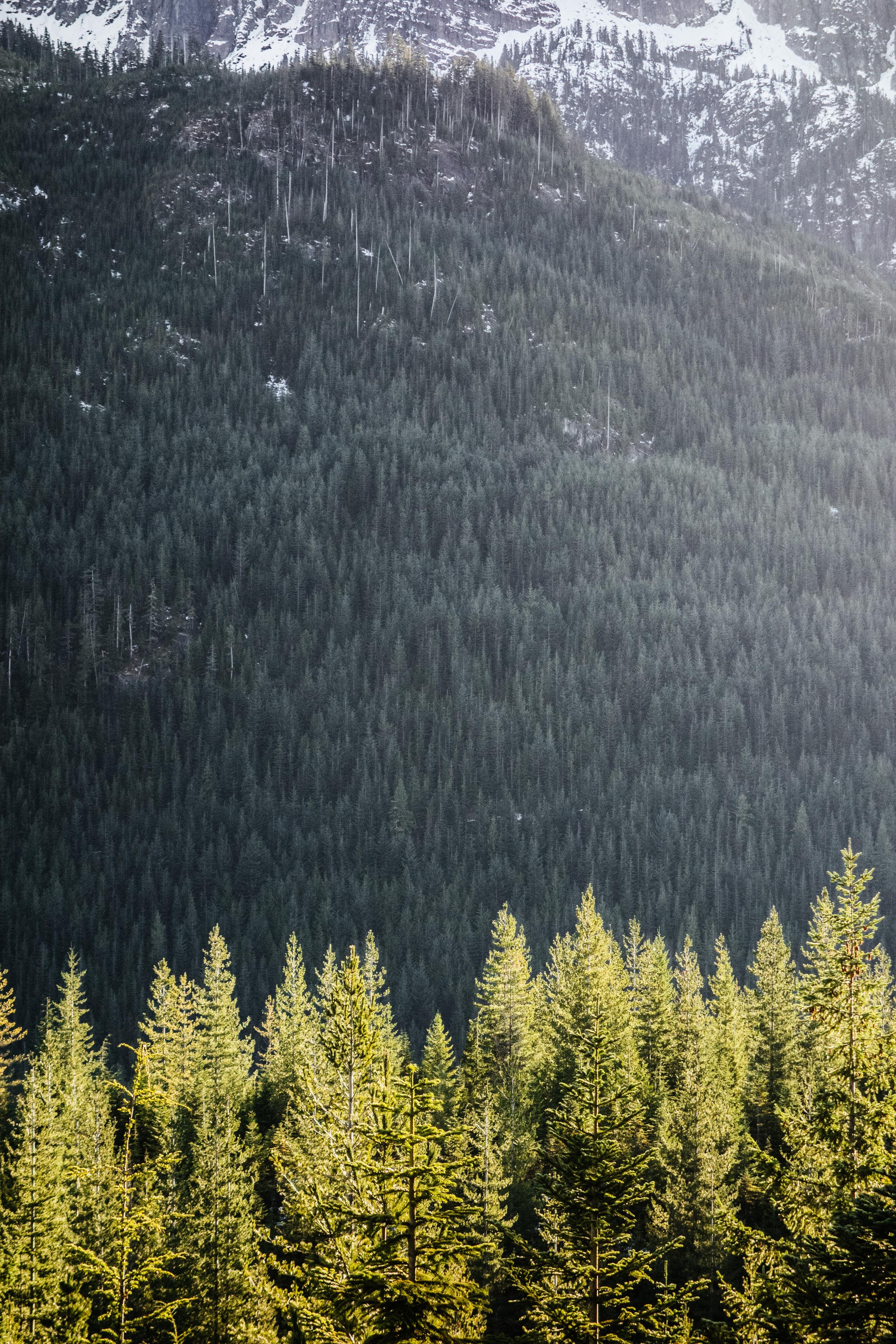 Squamish - 5.jpg
