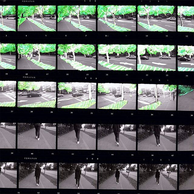 "For two days I led an experimental film workshop in Bacau, Romania, for a talented group of young film makers as part of the @film.mai.aproape Summer School. We made a tiny film experiment (30 secs long!) Here are some of the raw negs on a flatbed.  I wanted to say something about the wider festival. Bacau's a lovely place, but it's also a small city on the European periphery, much like the place I went to high school too. In my London bubble, a project led by women is normal, but in a small town change can happen pretty slow. Watching middle aged dudes openly say the festival ""should be run by a man"" and then try to sabotage it on sexist, corrupt or religious grounds was saddening, but the festival's response was amazing.  Local state funding was cut at the last minute, but the fest still went ahead. They crowdfunded part of it. Someone borrowed their grandmother's funeral money and donated it. Staff volunteered their time. Holidays were cancelled. I can't even.  A workshop leader was deported; arrangements were cancelled by institutions minutes before events, on bizarre grounds (a common tactic to censor without it being recorded as such); participants were stranded for hours in the middle of nowhere with no food; projection equipment suddenly 'went missing' minutes before film screenings. Every single time festival volunteers, mostly female and 18 years old, pulled it out of the bag with their own resources and contacts in the town, rescuing screenings and events in the face of low-level sexism, corruption and censorship.  And in the middle of it all was the summer school: a place where it was fine for a 17 year old to be gay, or for a girl in high school to direct the shoot, or where a kid whose parents have no money can get their hands on a camera for the first time.  It was a privilege to come and witness for a few days, to be reminded of the ideals that bind us, and watch some great movies together. I miss everyone already.  #artistfilm #experimentalfilm #filmmaiaproape #romania #35mm #blackandwhite #fomapan #foma100 #handprocessed #negs #flatbed #artforsocialchange #staybrokeshootfilm #filmismyfilter"