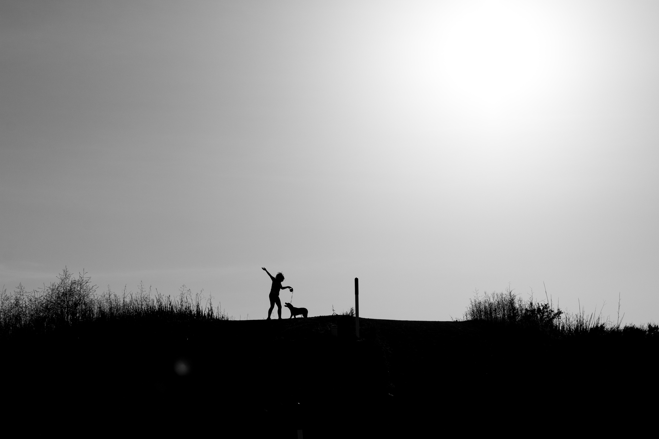 Sunset Hike (5 of 7).jpg