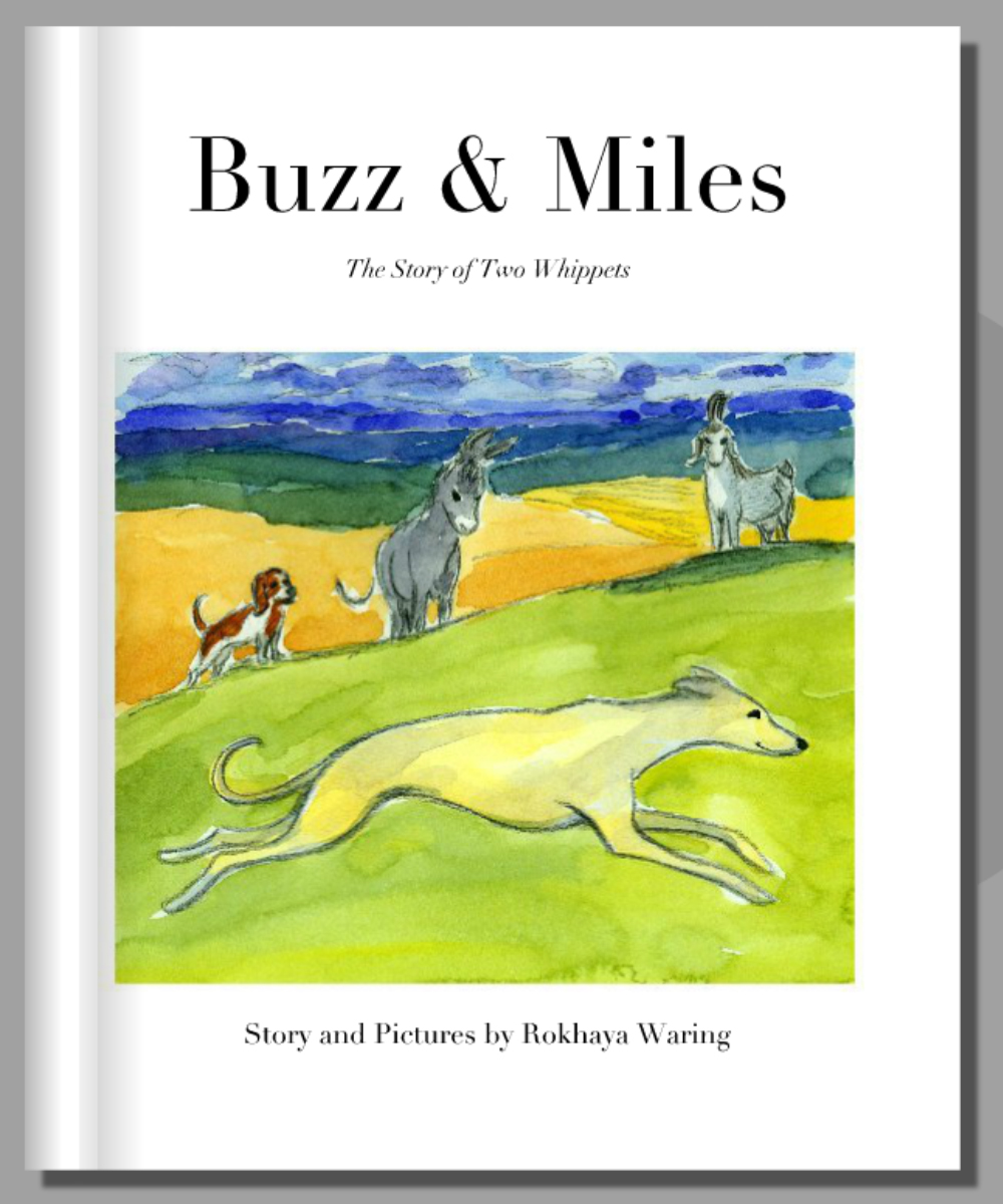 """""""Buzz and Miles; The Story of Two Whippets"""""""