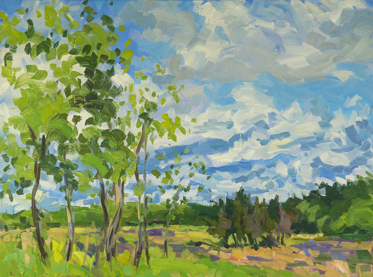 Marsh, Copse, Clouds