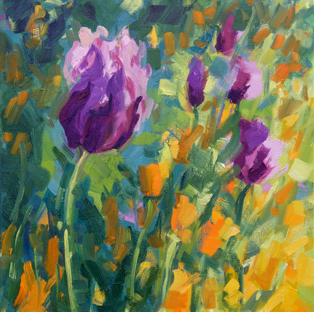 Purple & Orange Poppies