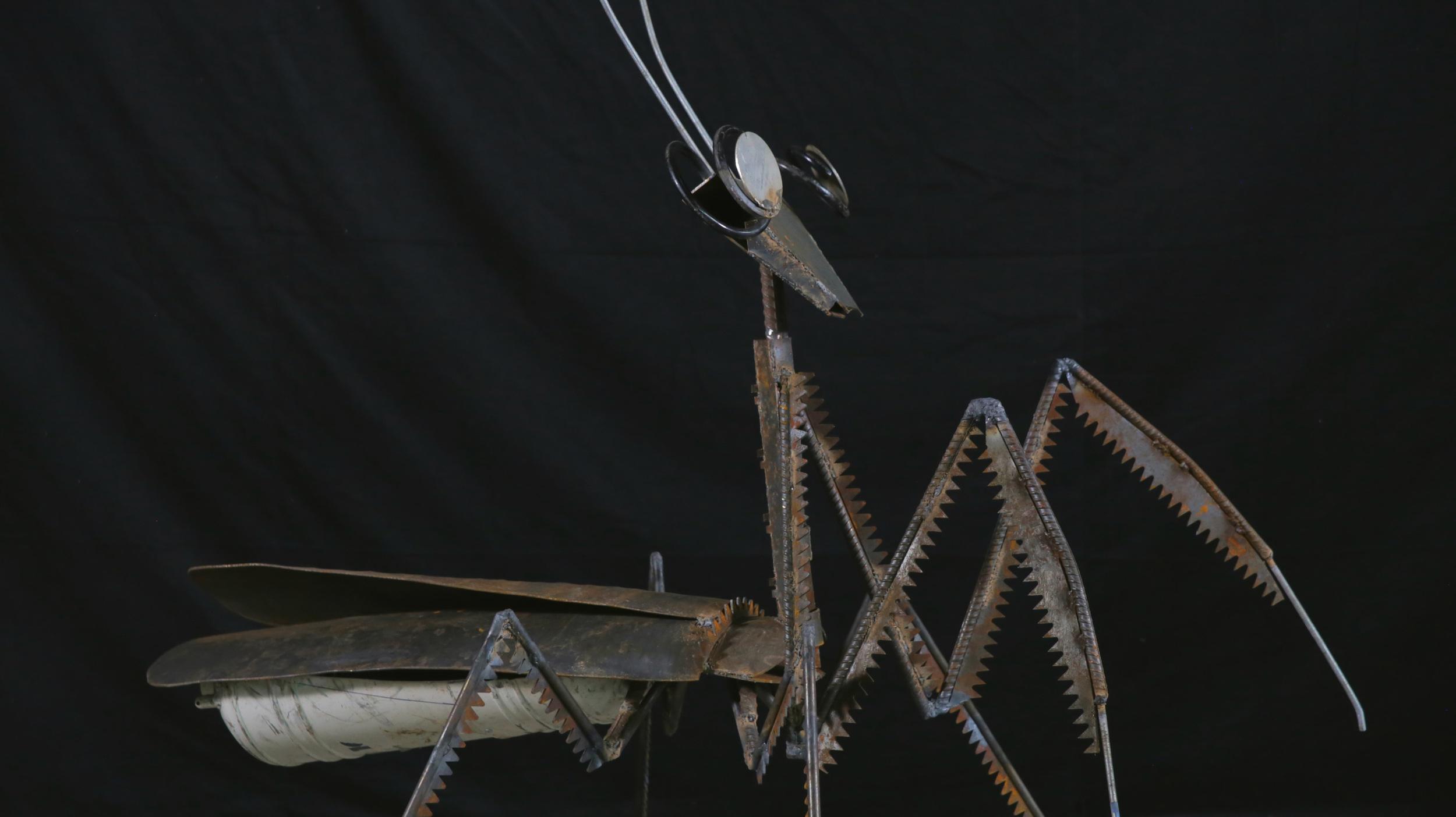 Mantis (Full).jpg