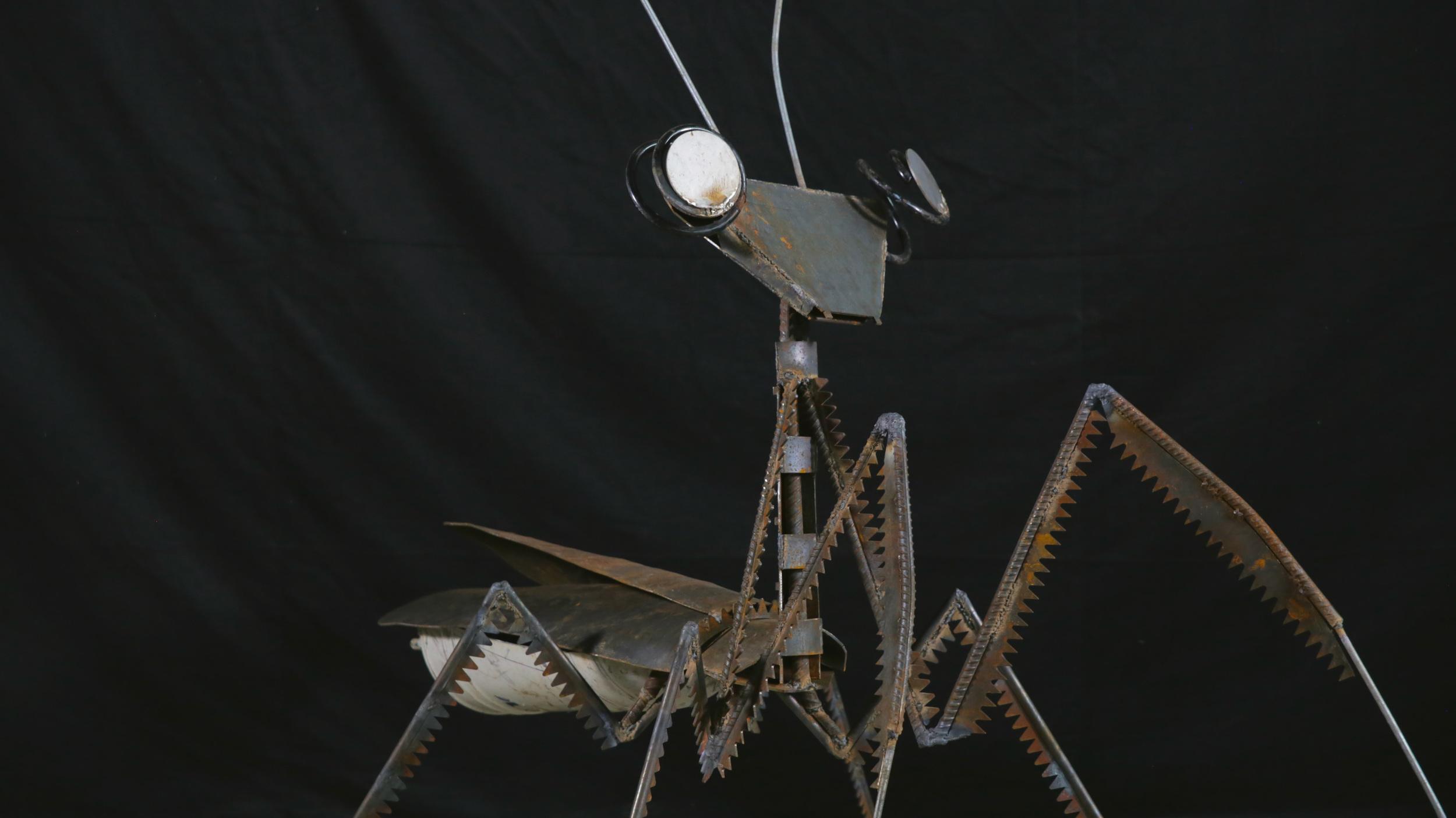 Mantis (Turned).jpg