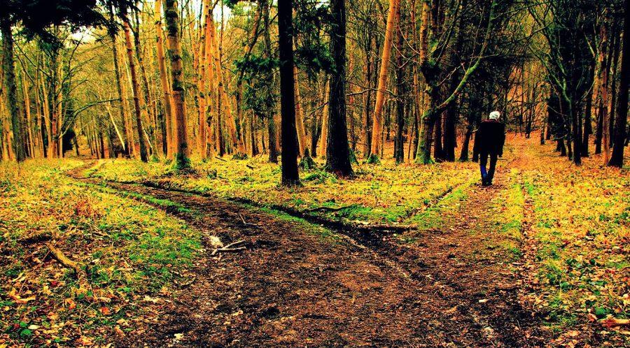 PICDeadline4_DearronStewart-900x498.jpg