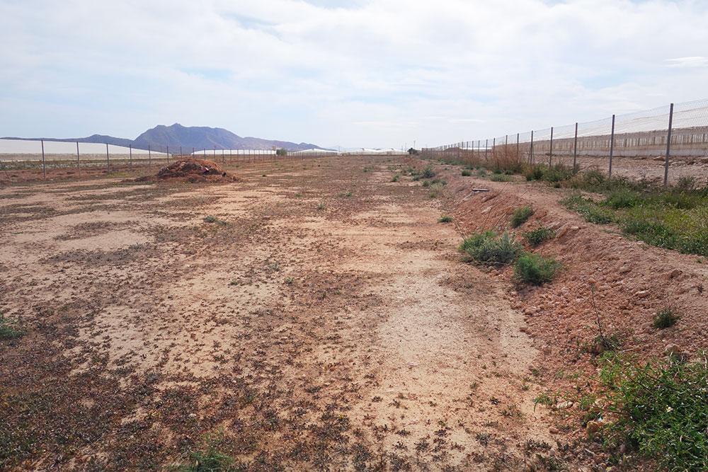 overview-land.jpg