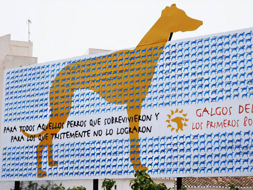 To celebrate 16,000 Facebook likes, GDS decided created the  16 Dog a Day initiative . and offer supporters the opportunity to celebrate/memorialize their pets. By donating 16 euros, a dog, cat or bird's name would become part of a permanent wall graphic in the GDS Centre. Additionally, we decided to create a billboard for the 1st and 2nd 800 names. Shown above is the first installation made possible by an anonymous donor.