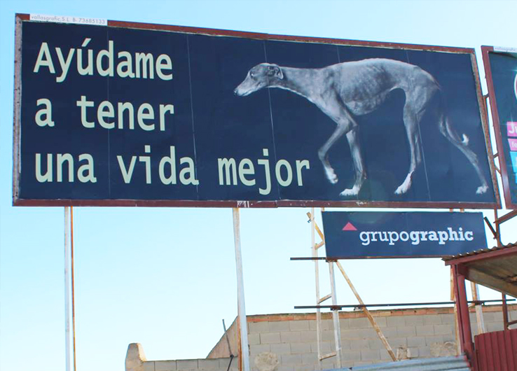 Location: Murcia, San Javier, designed and funded by DutchGalgoLobby.