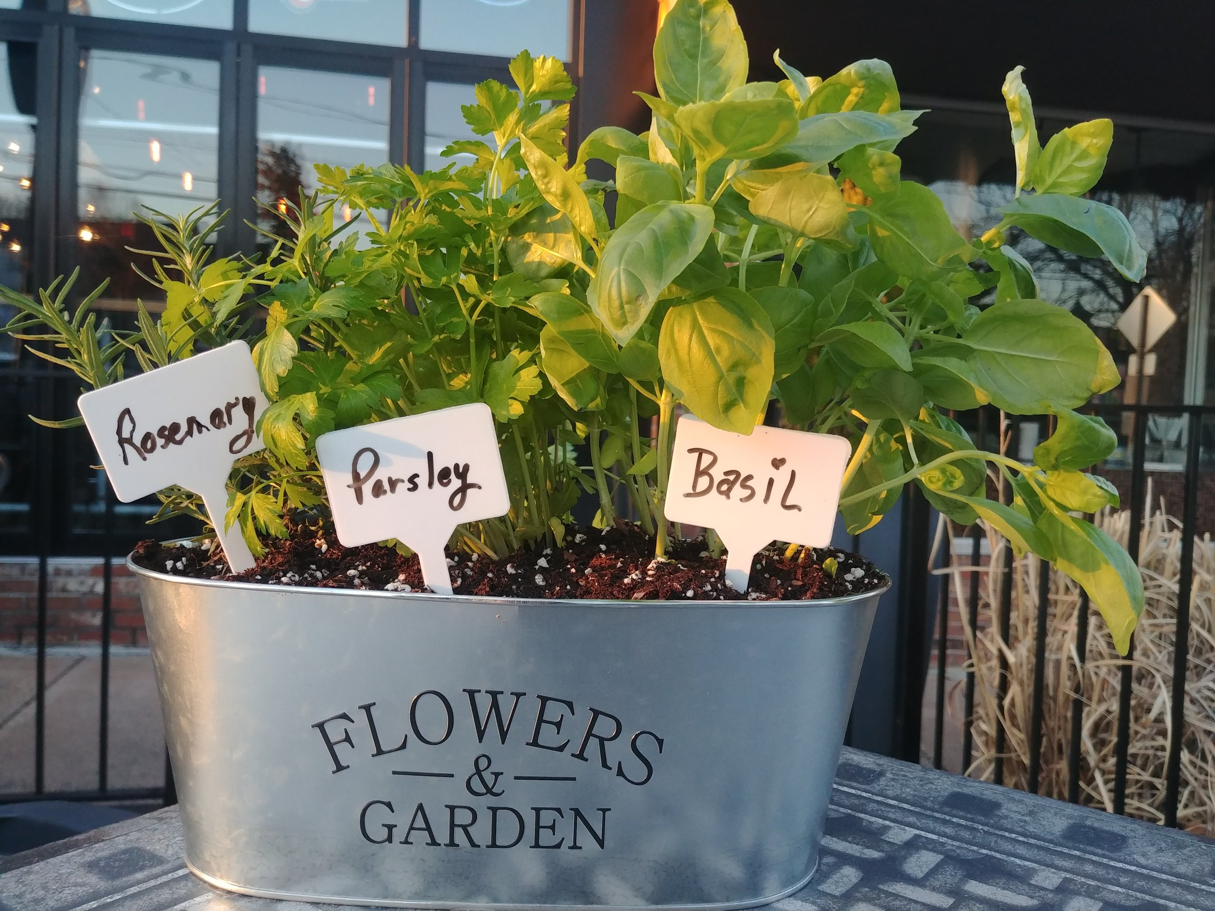 May 7th at 6pm at Plan B West Hartford. Park Road - Plant Night. Make one for the cook in your life! Just $30.