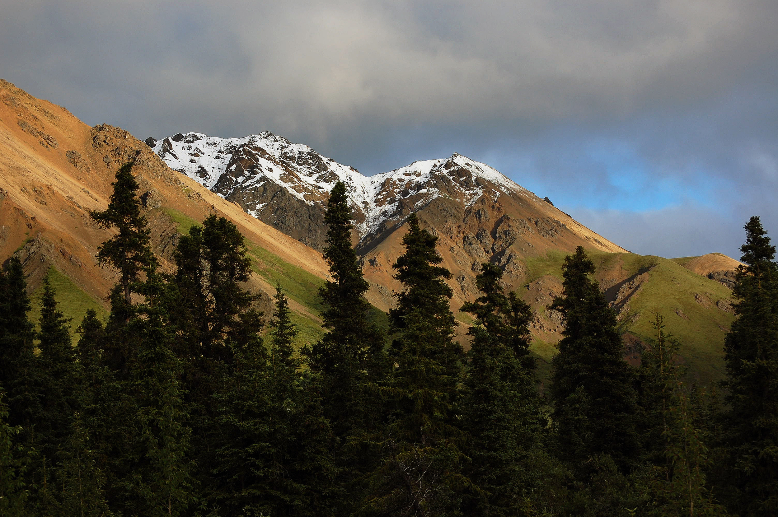 Alaska from Dads Camera 293.jpg