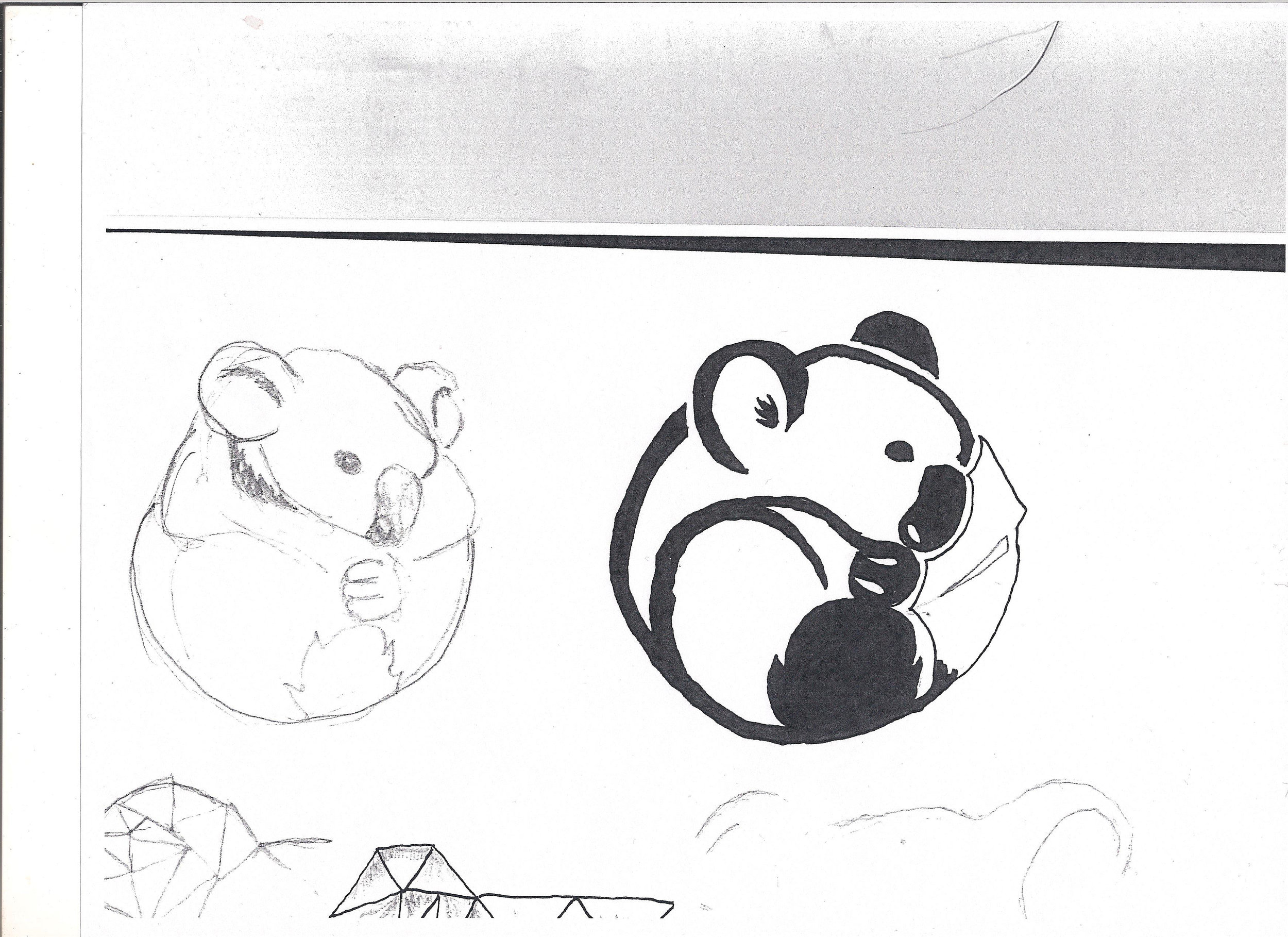 koalaSketch.jpeg