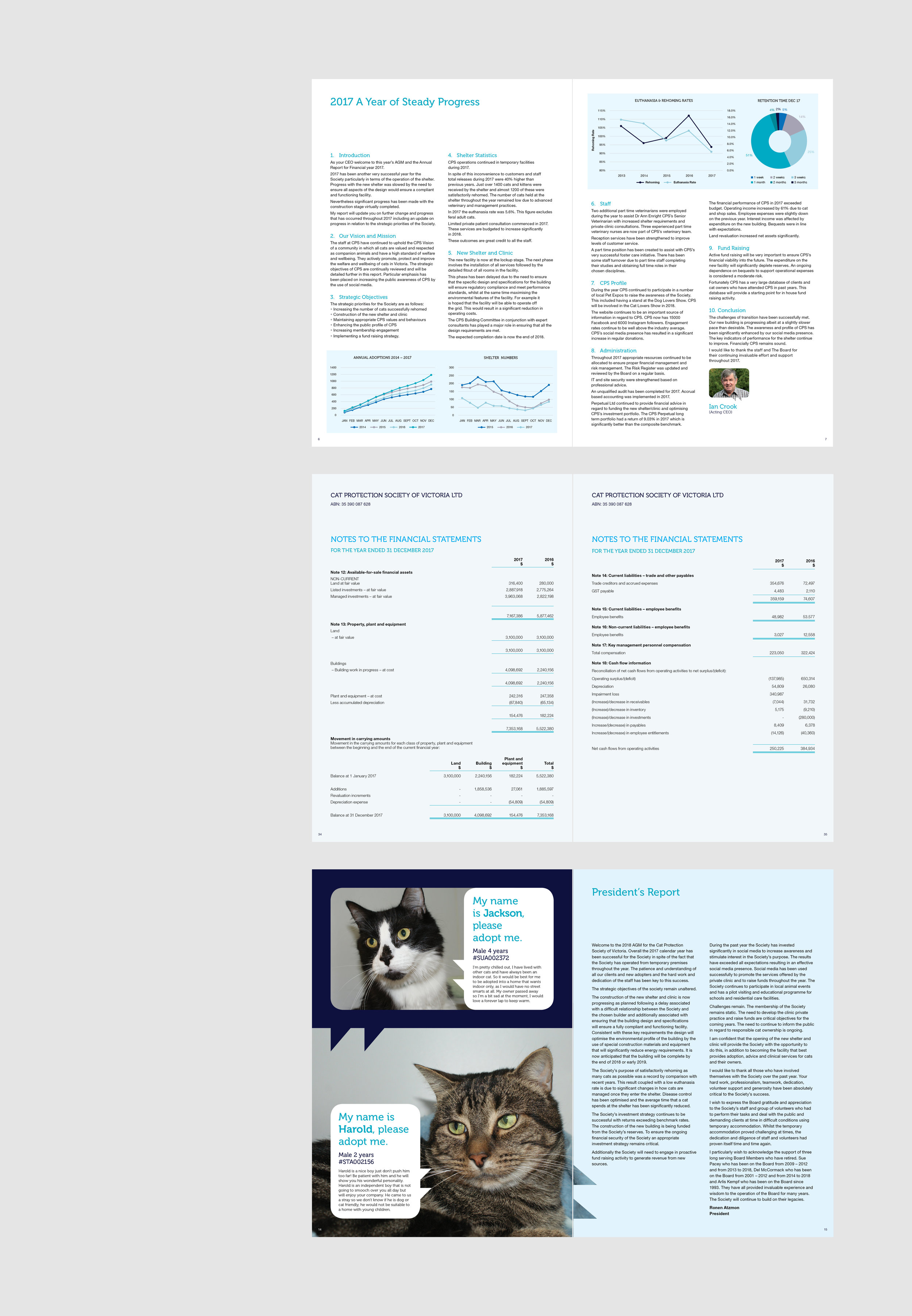 Gray+Design+Cat-Protection-Society+Annual-Report-2.jpg
