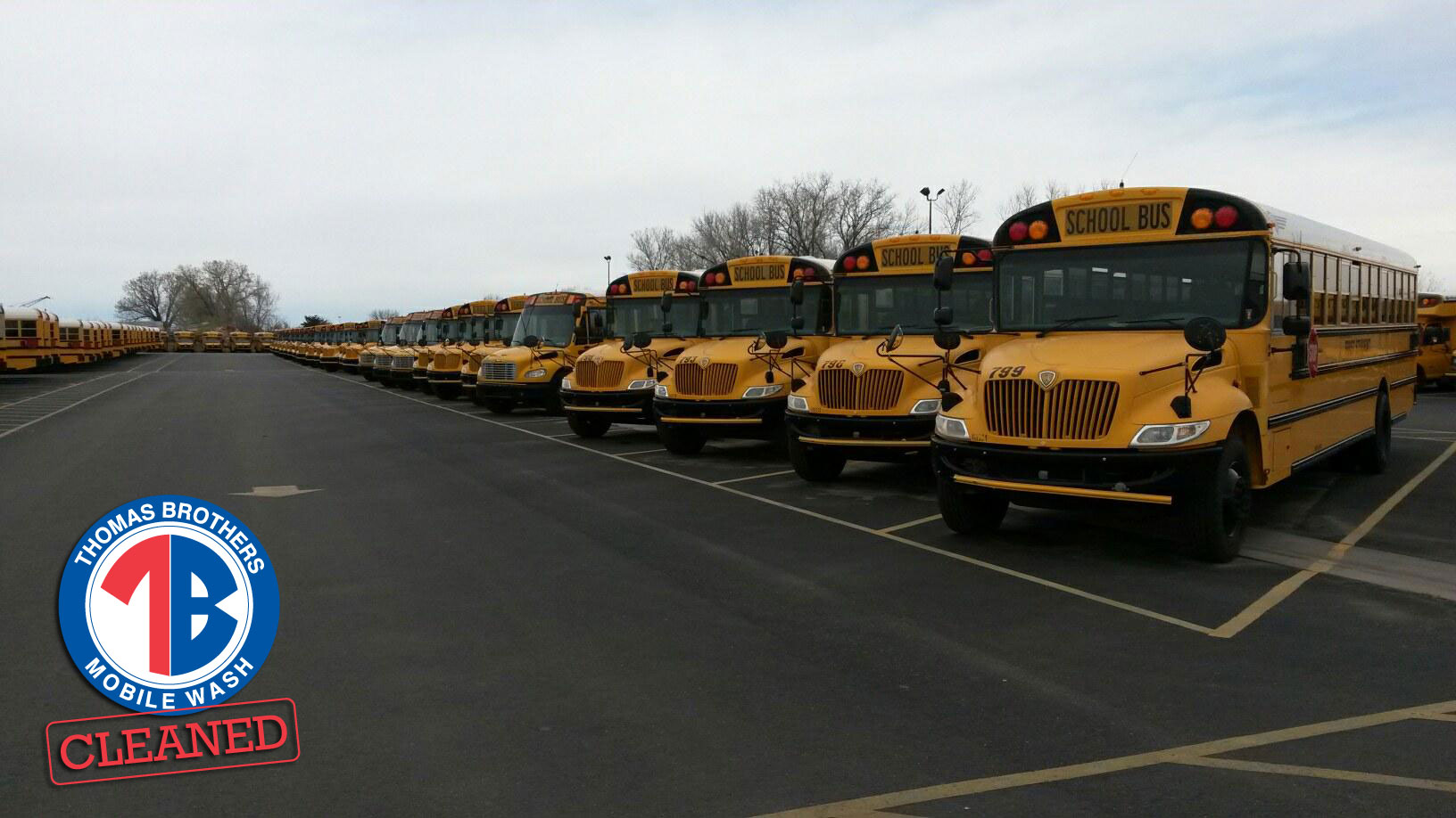 powerwashed_school_buses.jpg