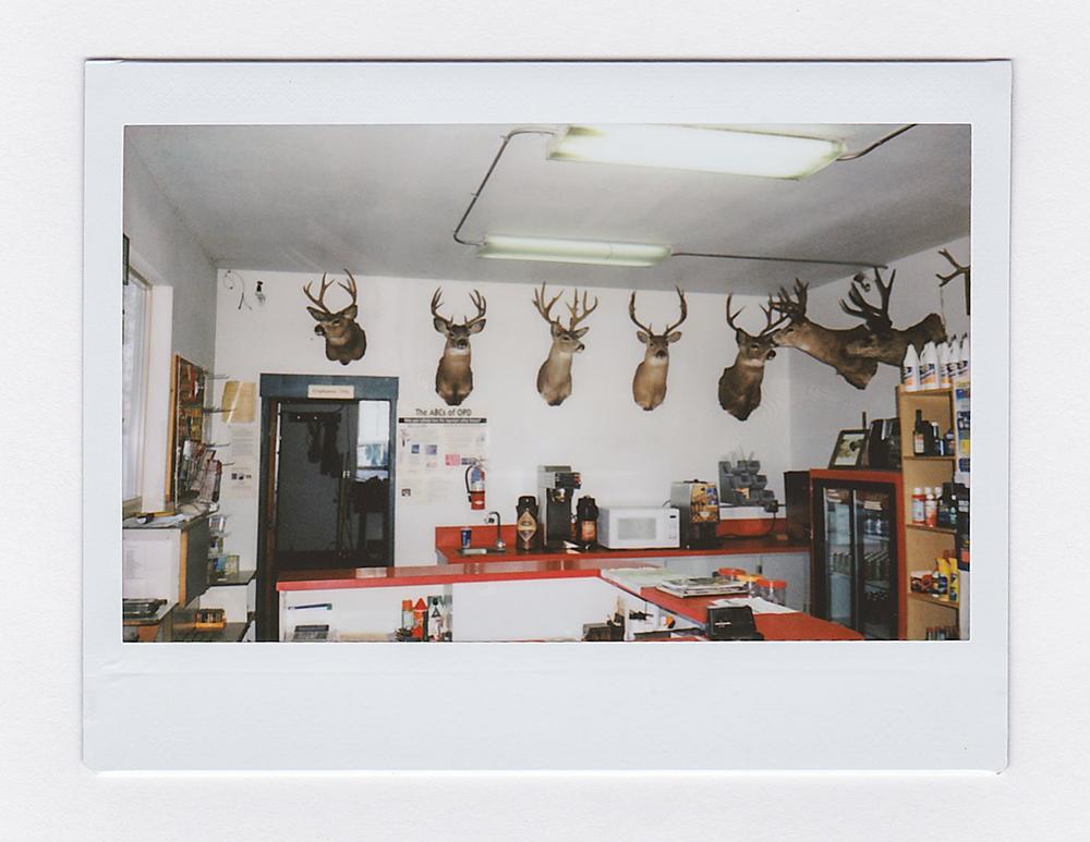 DeersGasStation2.jpg