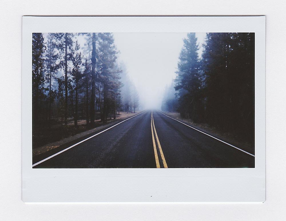 ForestFireRoad2.jpg
