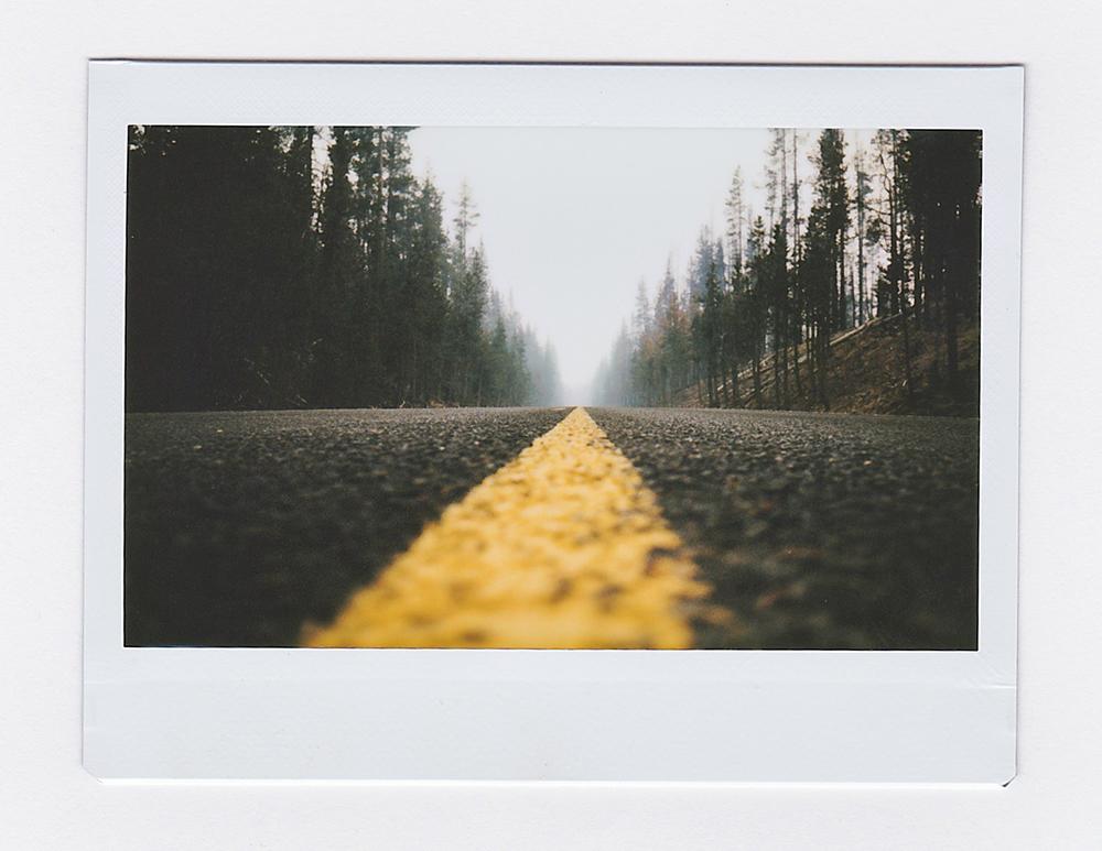 RoadForestFire2.jpg