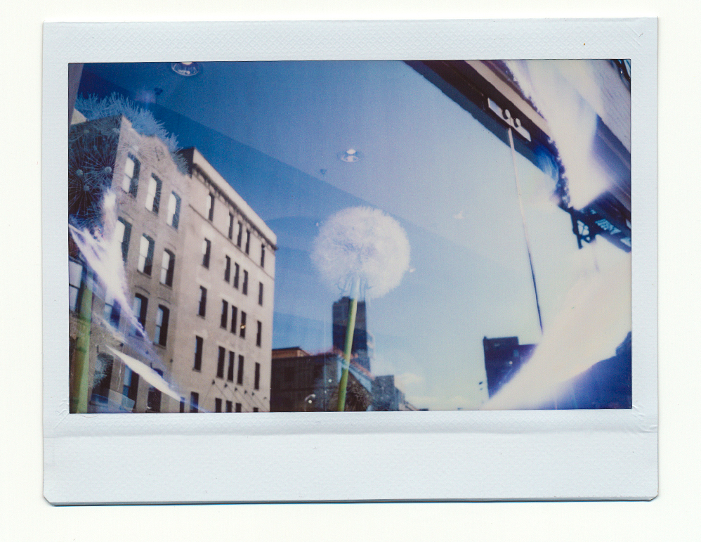 InstaxResized2017-Recovered-RecoveredE.jpg