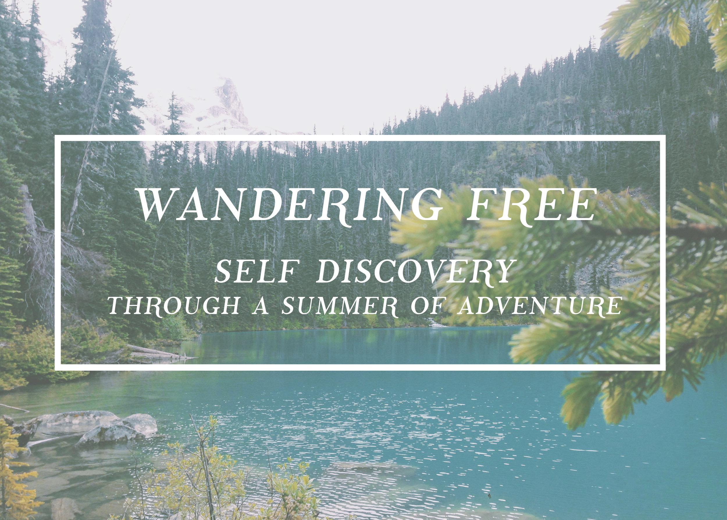 Wandering Free - Louise Johnson