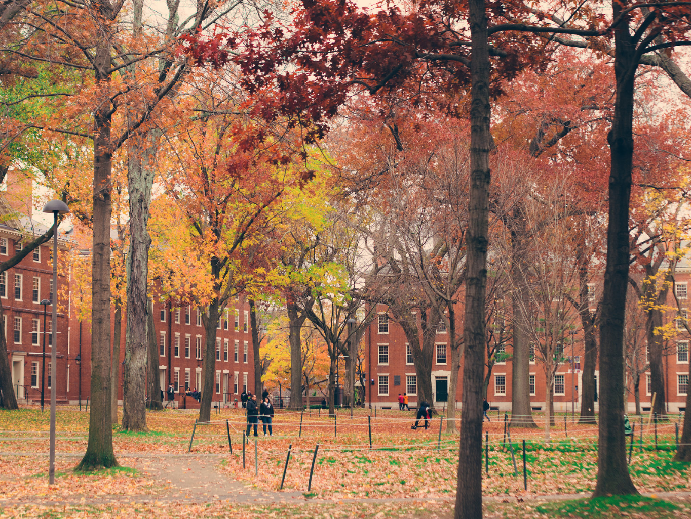 Harvard Yard - Boston
