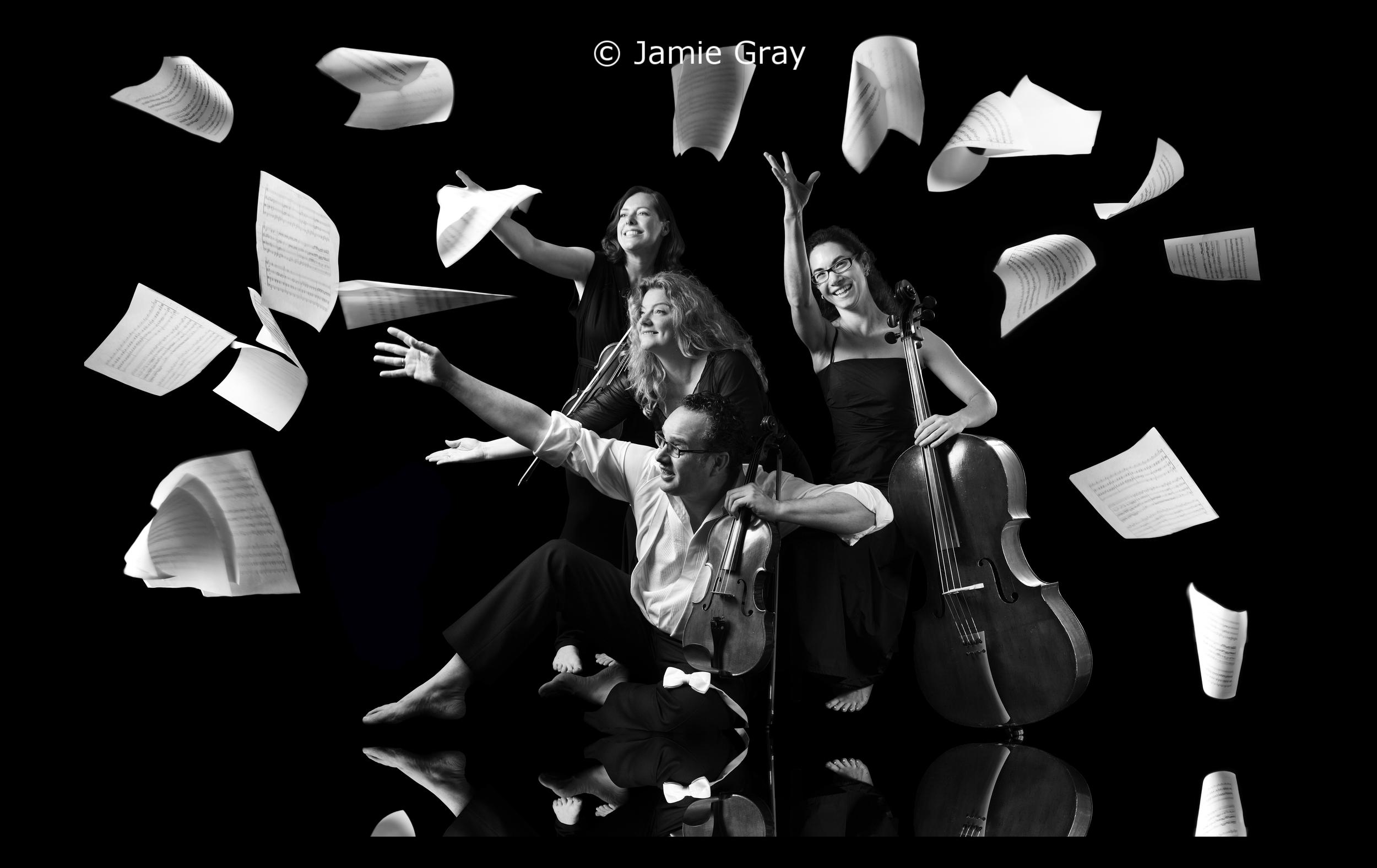 Acacia Quartet 2011
