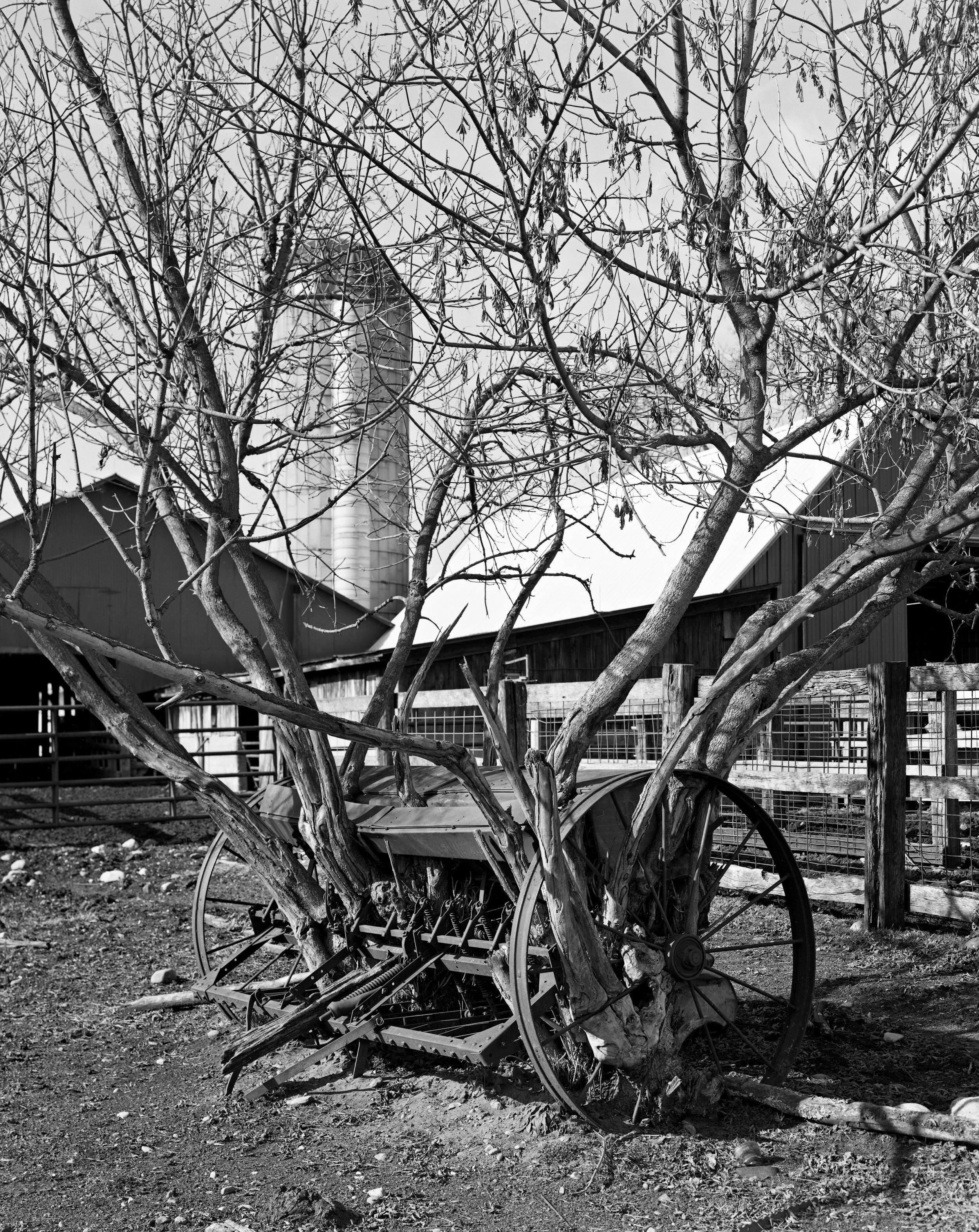 Family Farm delta005.jpg