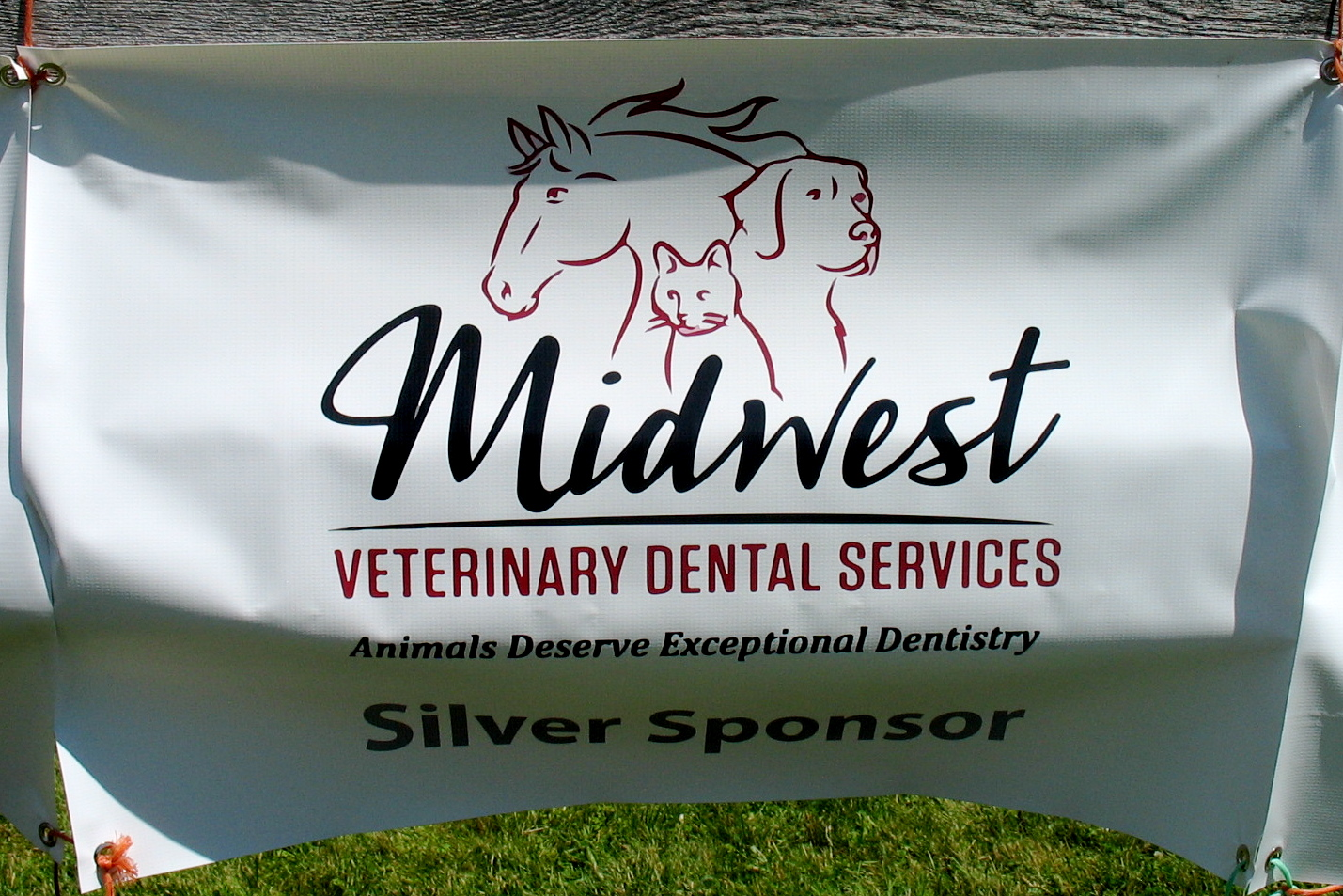 MIdwest Veterinary Dental Service  www.midwestvetdental.com
