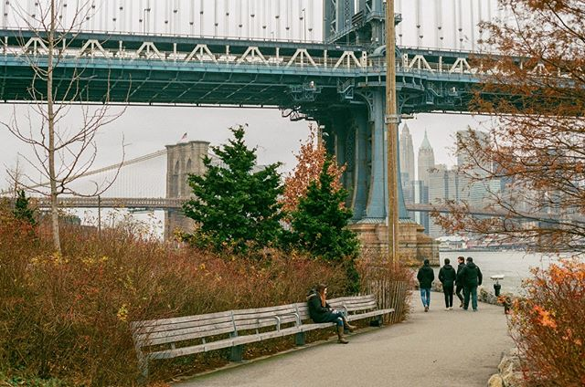 #35mm #filmisnotdead #staybrokeshootfilm #nycspc #nycstreetphotography #brooklynbridge #manhattanbridge