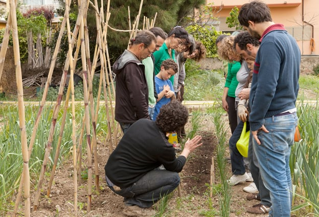 A l'hort del projecte EsBioesfera ensenyen ecologia urbana.