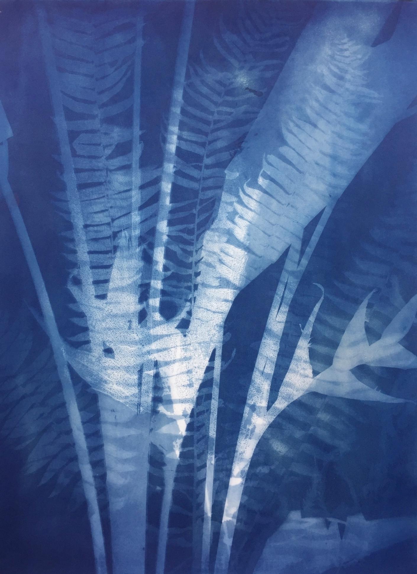 Heliconia Sea Fan 56 x 77 cm  £750