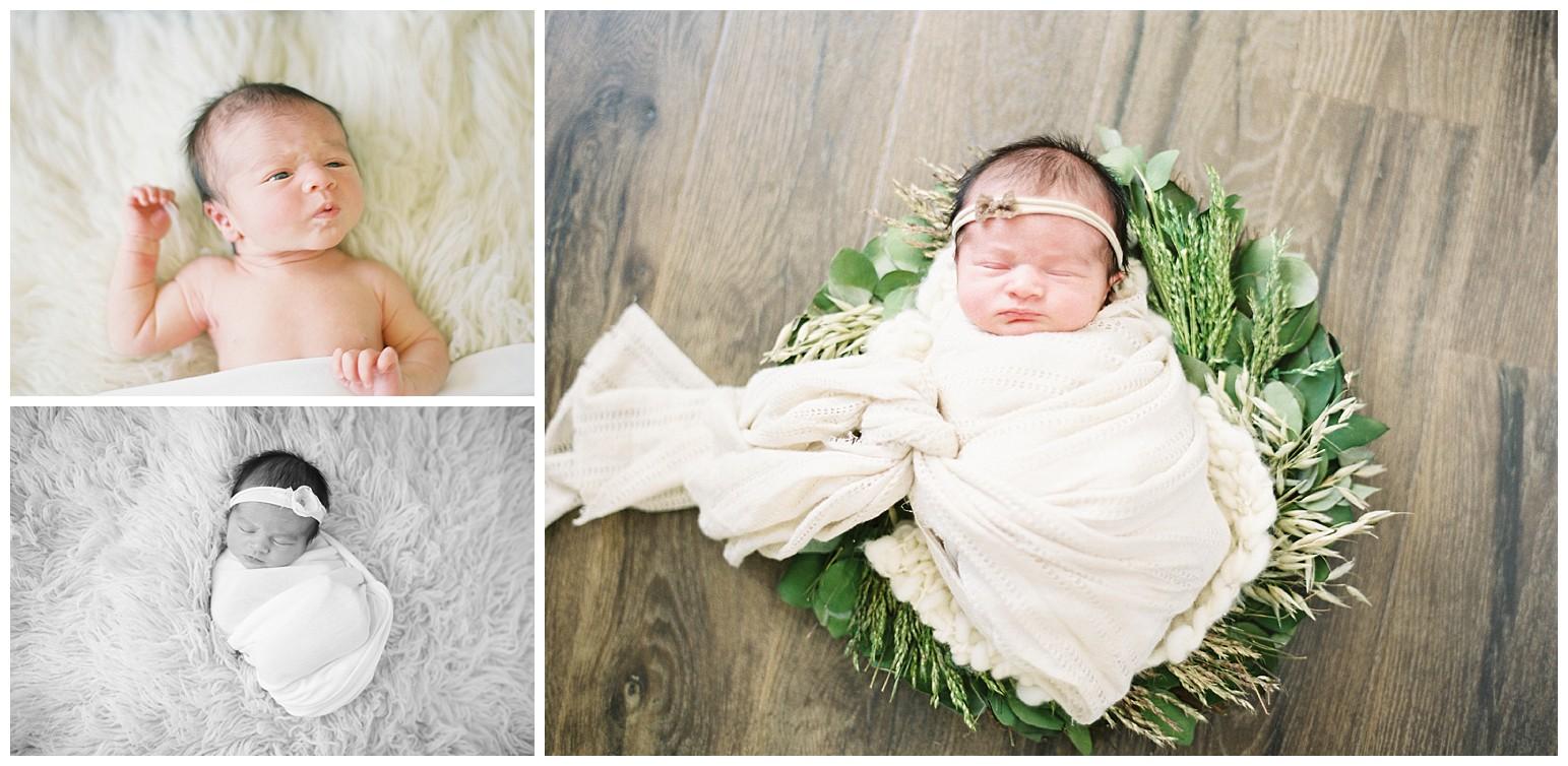st louis photography_maternity_lauren muckler photography_film_st louis film photographer_0331.jpg