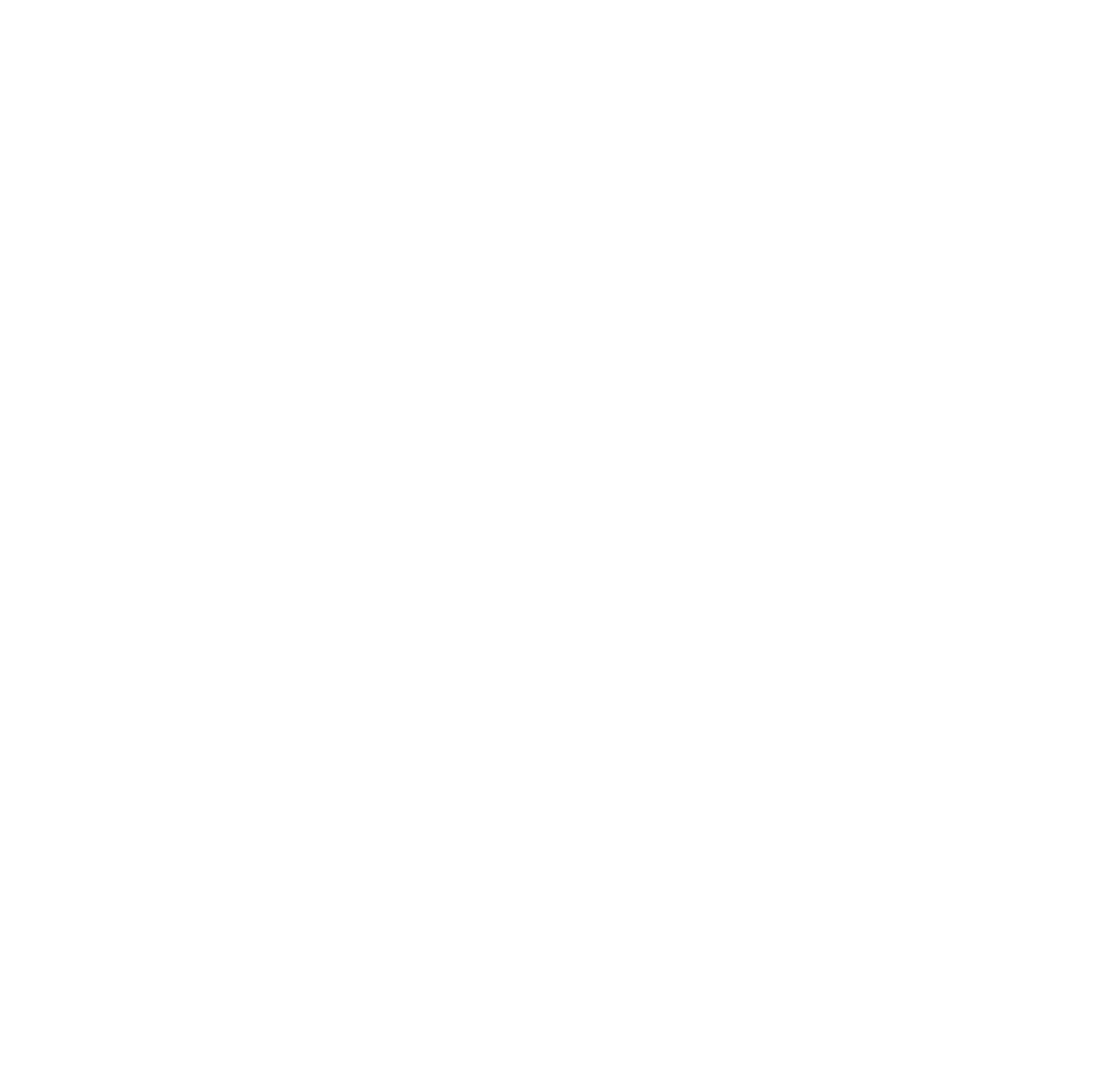 All Is Amazing Client_Richard Mille.png