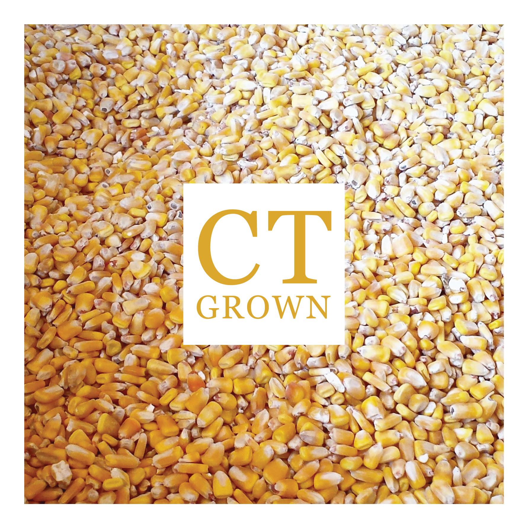ct grown corn