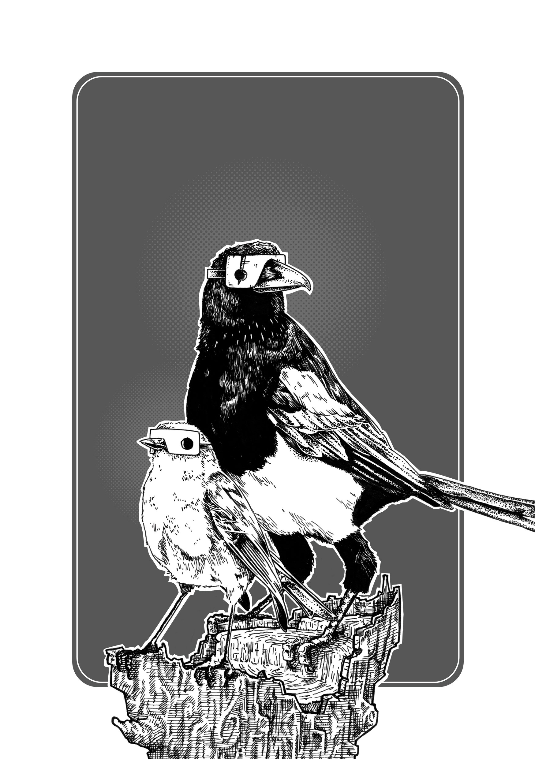 Magpie&Robin Final XL.jpg