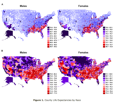 Top 2 maps: LIFE EXPECTANCY OF African american males and females., Bottom 2 maps: Caucasian males and females.