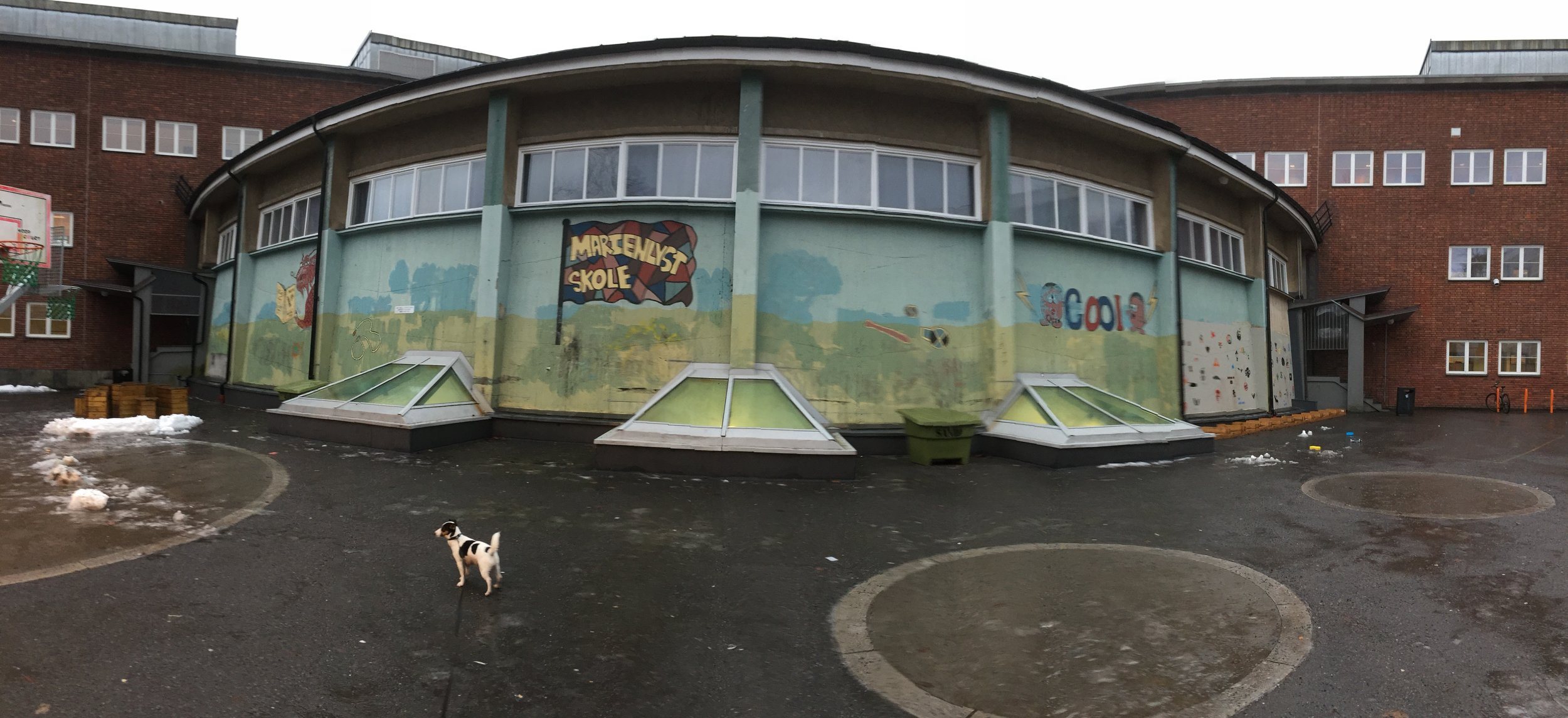 Her er aulaveggen i skolegården for ungdomsskolen på Marienlyst. Mitt største lerret til nå - 130m2!