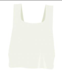 canvas bag.png