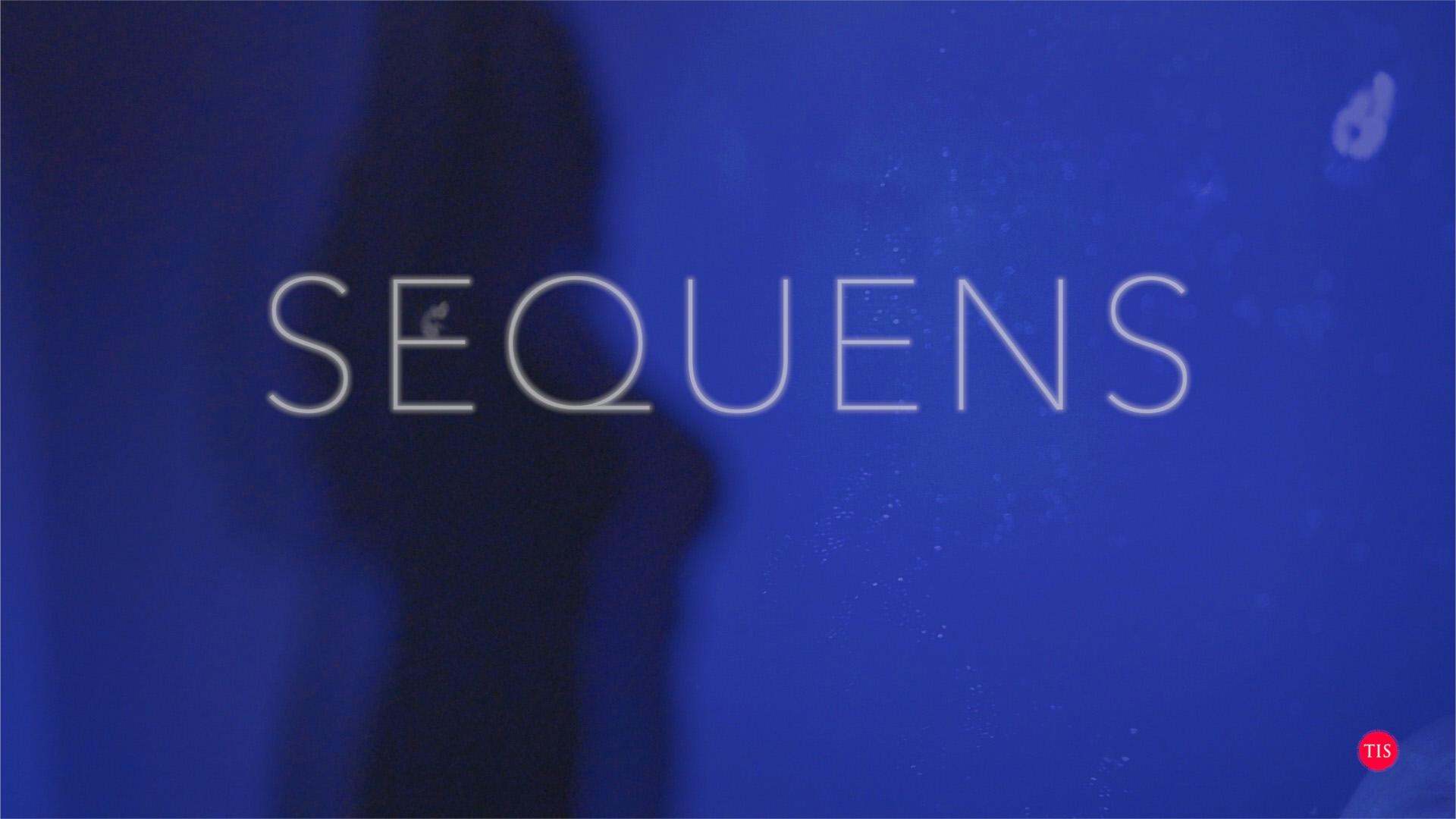 Sequens_02.jpg