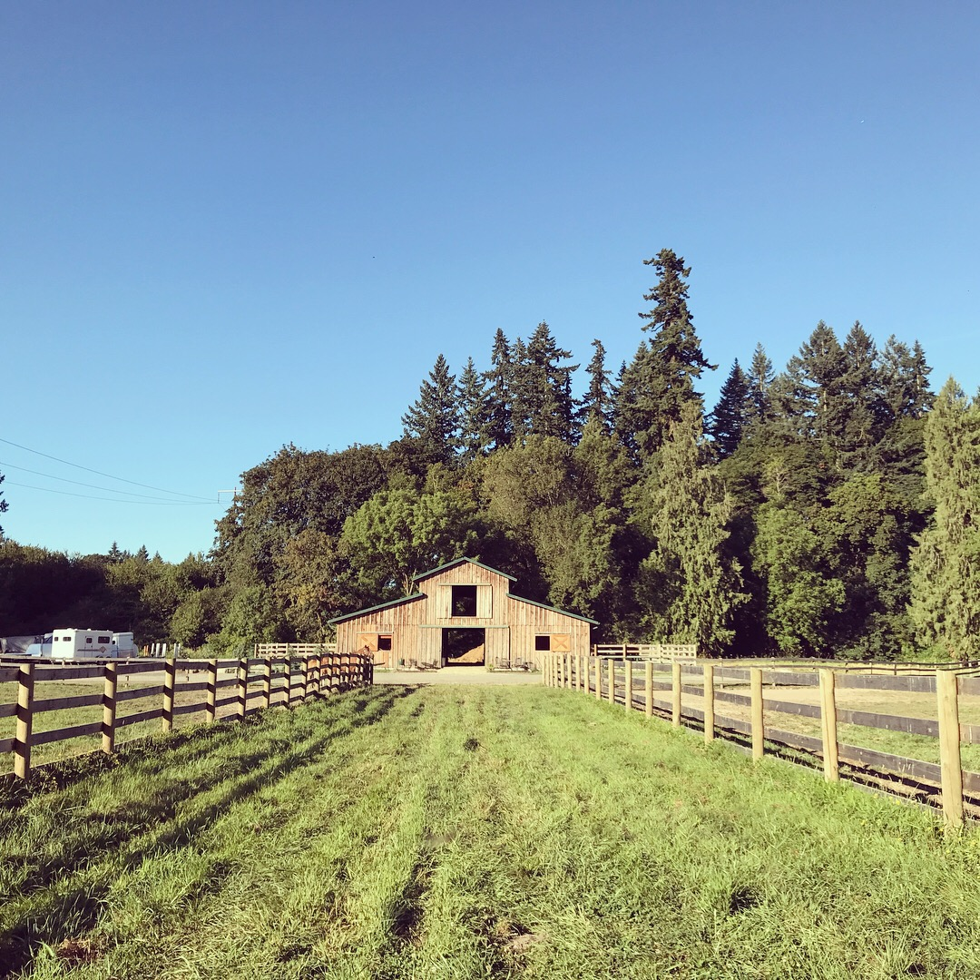 viola farms barn.JPG
