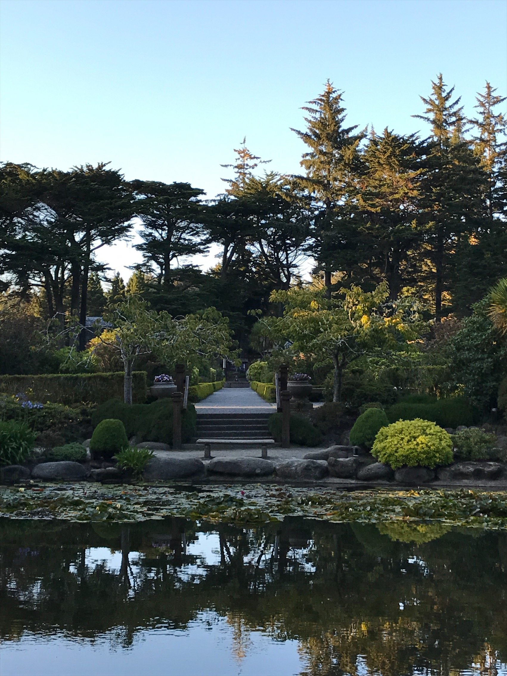 botanical garden 3.jpg