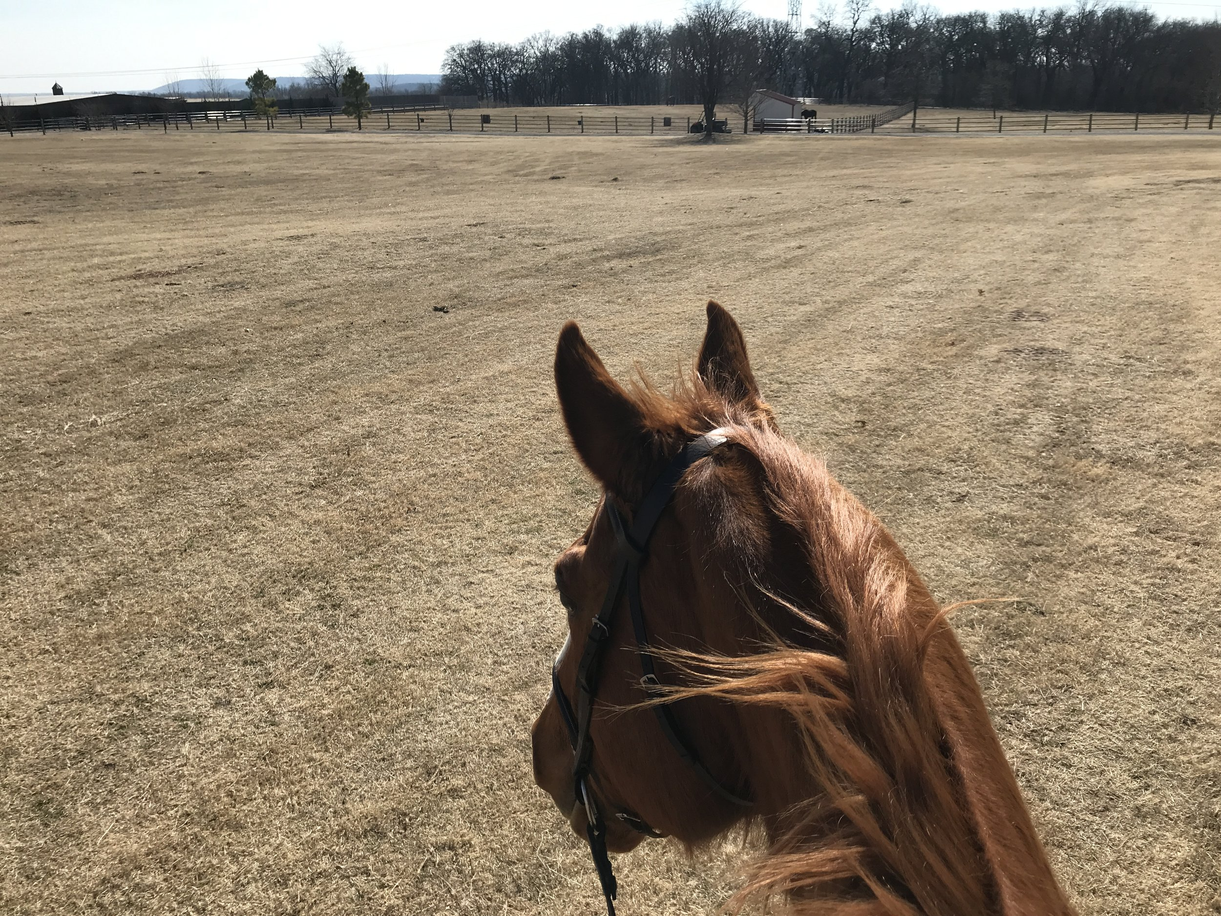My happy place - where I go for some stress relief.