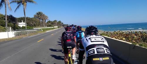 Bicycle riders on the street on Palm Beach island.