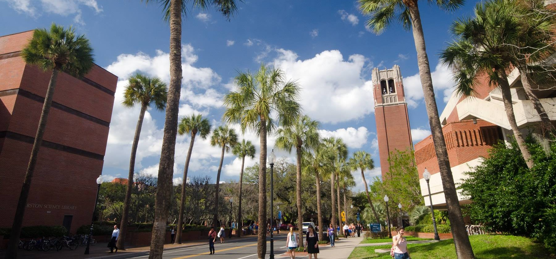 I am proud to bea double graduate of the University of Florida. Being a University of Florida bicycle accident lawyer allows me to help you with your potential case.
