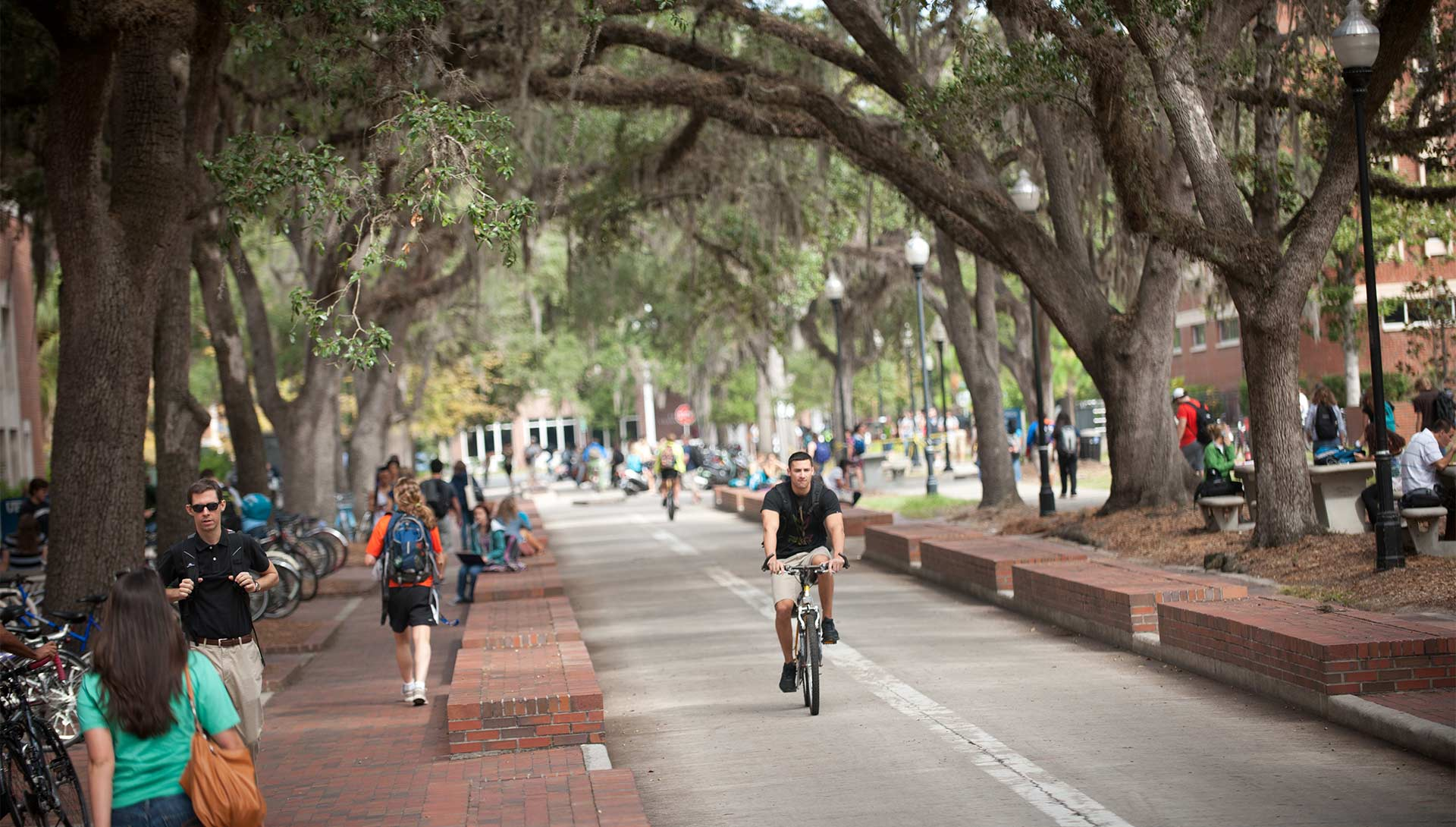 UF Bike Accidents on Campus