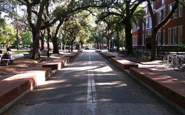 University of Florida Bicycle Injuries