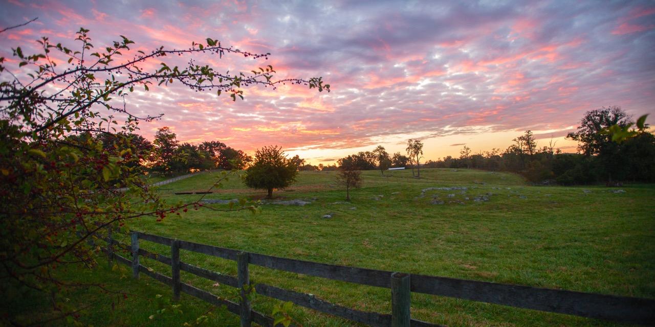 Chapel Hill Farm