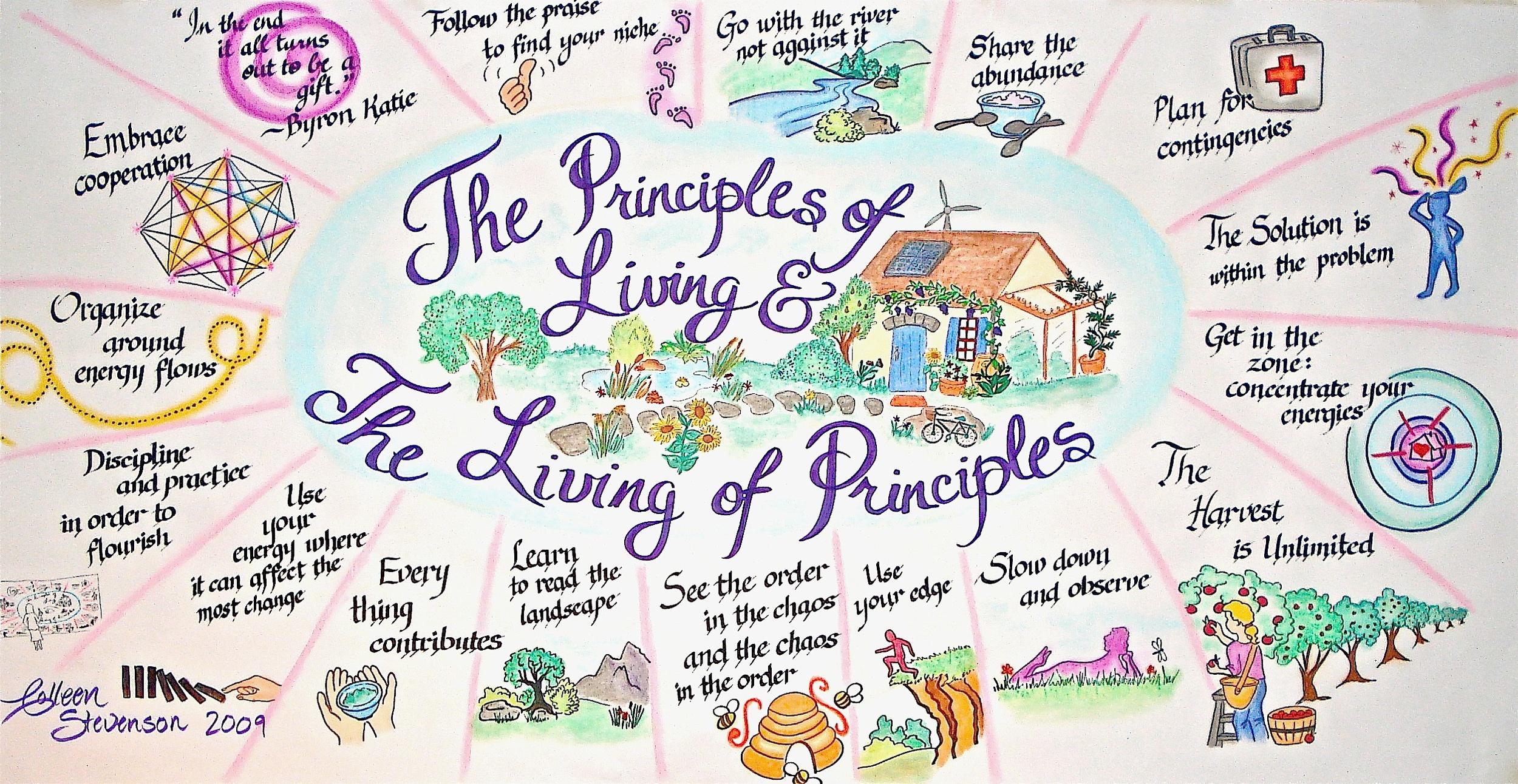 permaculture principles.jpg