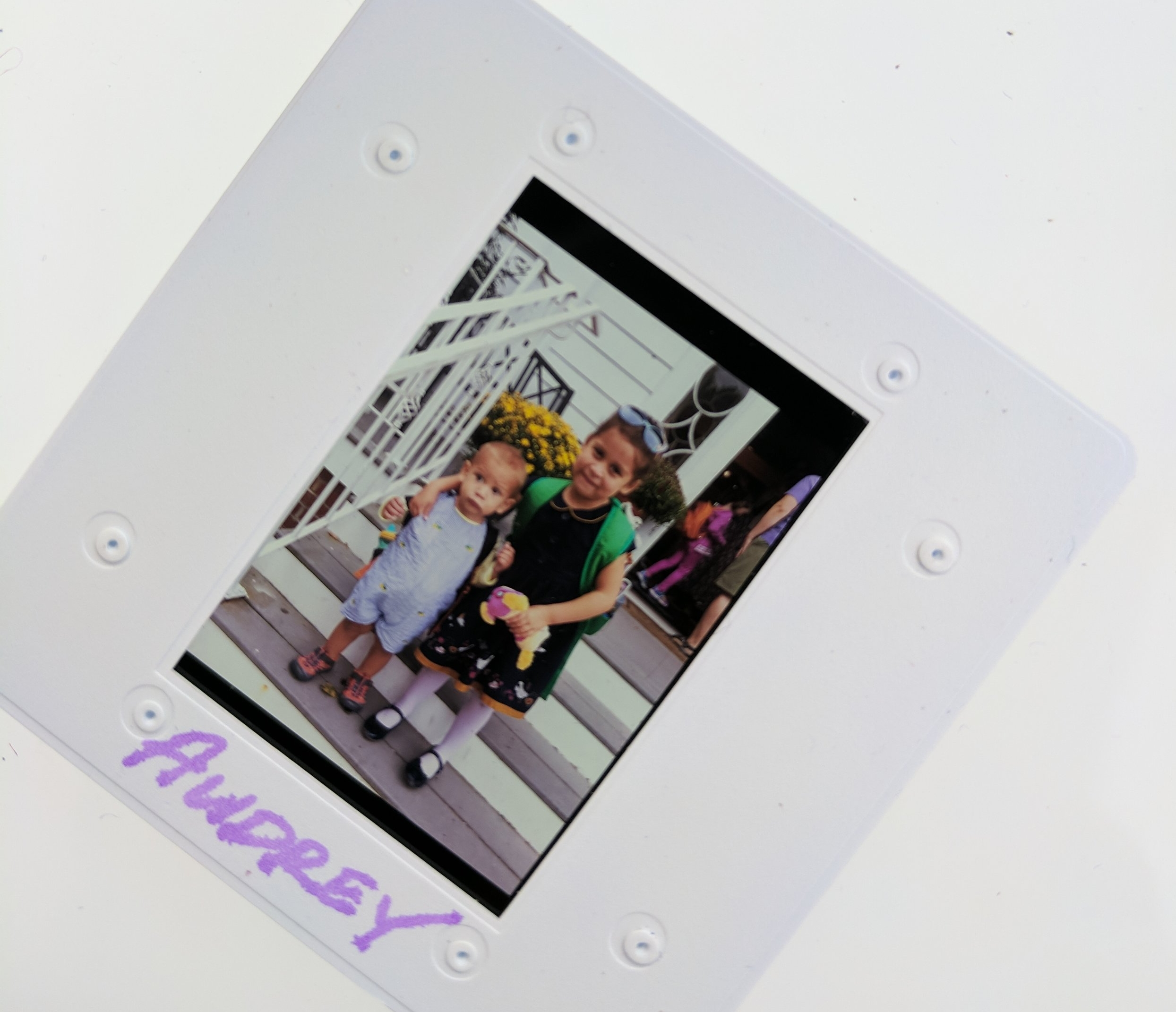 A slide with an image from Audrey's collection.