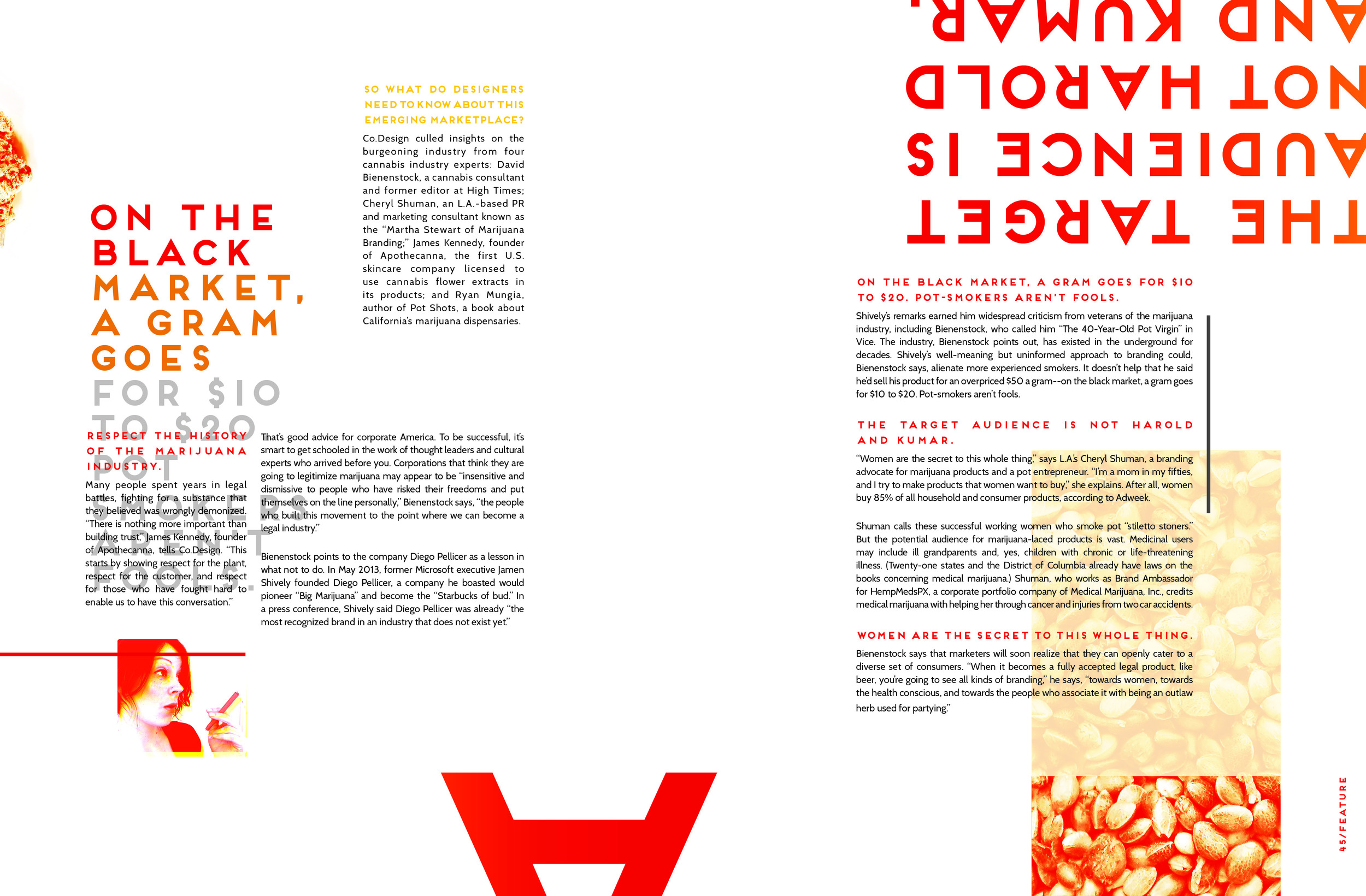 magazine_cannpack_layout_spreads5.jpg