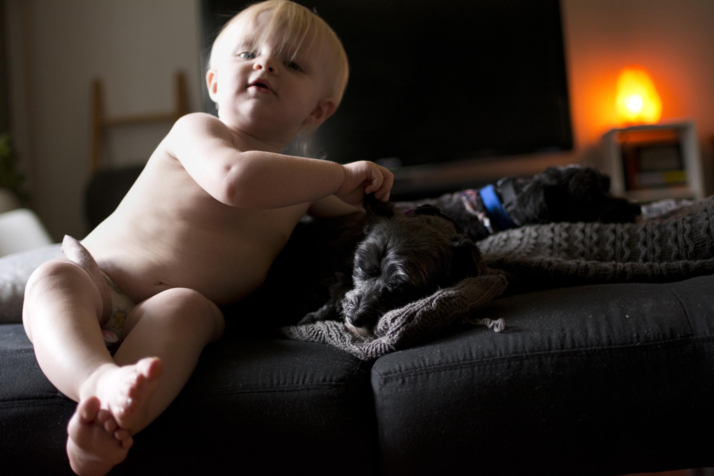 puppies5_bailey_s.jpg