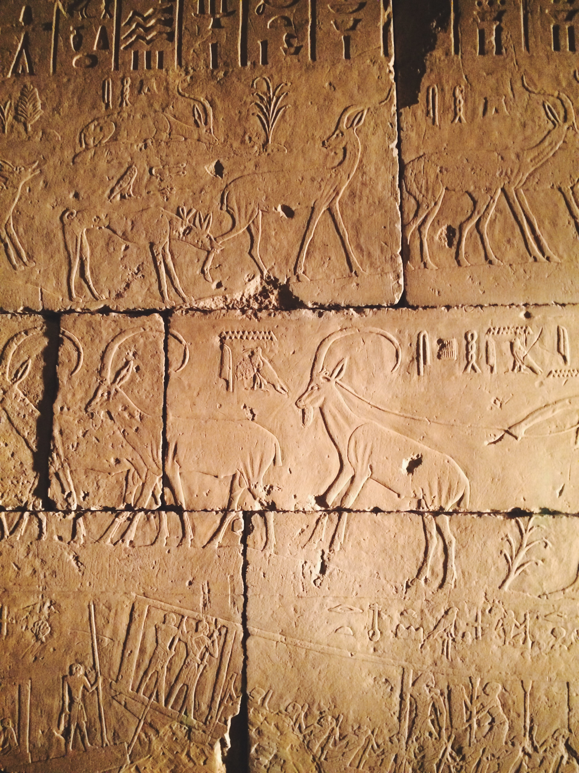 Actual hieroglyphics on stone from the Ancient Egypt exhibit at the Met.